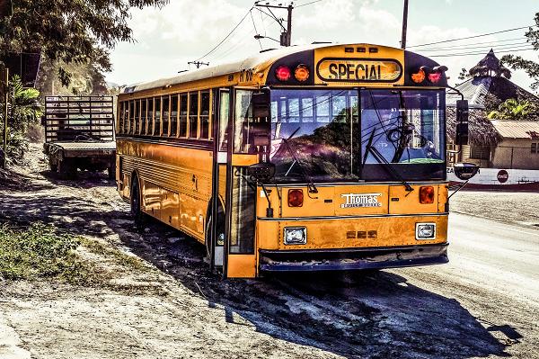 海外のバス